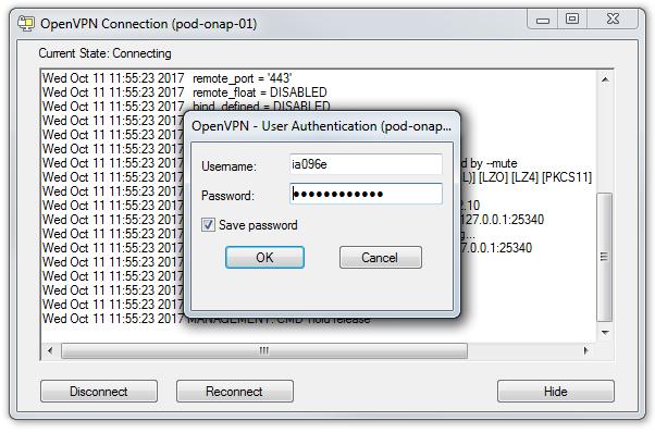 Using Lab POD-ONAP-01 Environment - Developer Wiki - Confluence